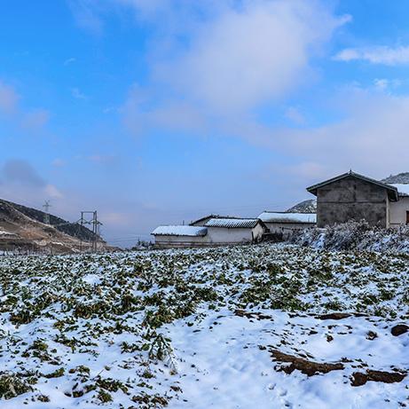 美丽彝乡——安哈雪景