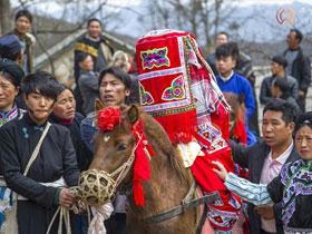 彝族婚俗 别样的文化传统