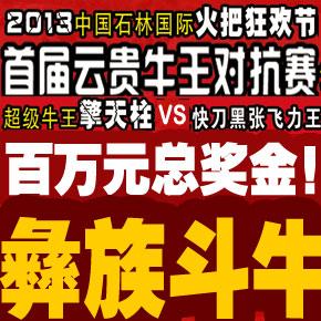 2013中国石林国际火把节超级斗牛对抗赛