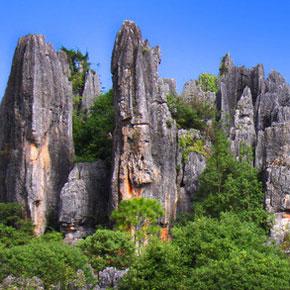 """世界级景区推出四大庄园观光 今年五一石林最有""""玩场"""""""