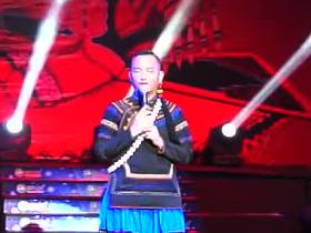 2015珠三角彝族年 文艺晚会