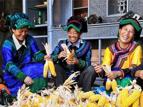 海来阿平:透过欢乐的镜头,用心纪录新彝乡新彝人