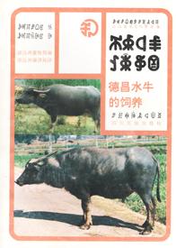 《德昌水牛的饲养》