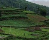 越西发现两座疑是彝族大型向天坟