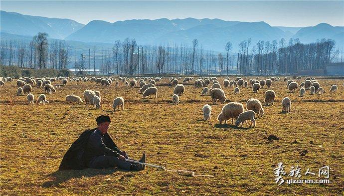 牧羊人-聂川皓
