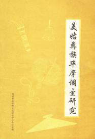 《美姑彝族毕摩文化调查研究·艺术专辑》
