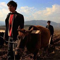 国际马铃薯年全球摄影比赛业余组一等奖作品