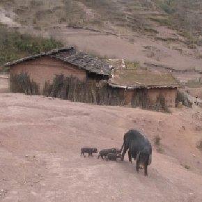 彝人迁徙之路第三站:布哈依达 风伴随水流天边去