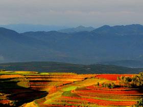 云南东川红土地——大自然的调色板(一)