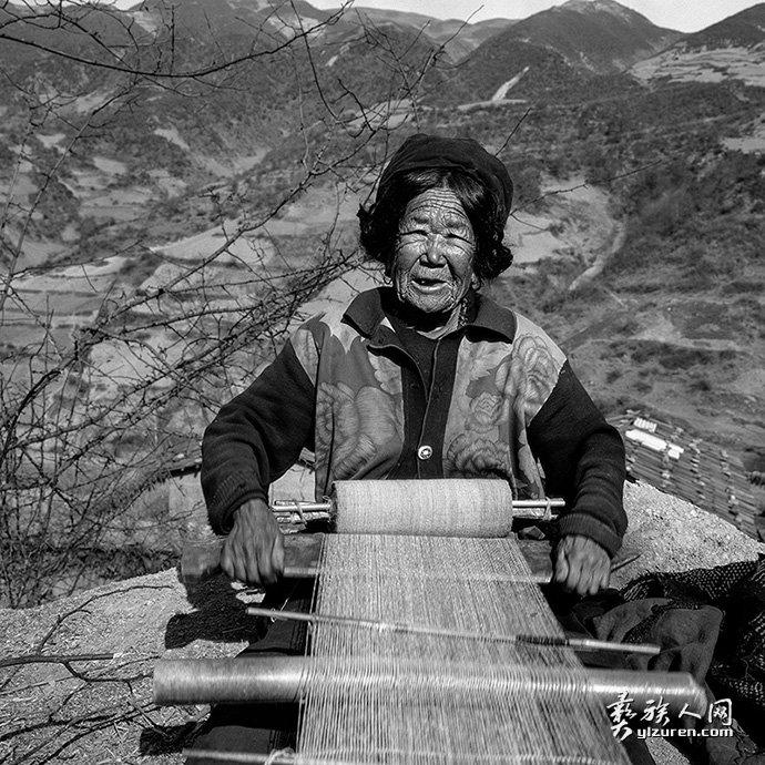 织羊毛-(特里木-2000)-李杰