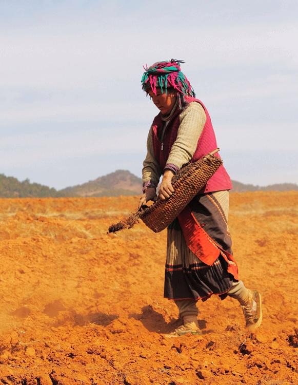 红土高原的彝人