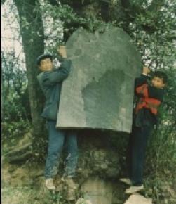越西自然奇观树衔碑