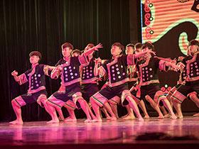 彝年聚亲朋,彝心暖京城——2016北京彝族同胞欢度彝历新年系列活动在中央民大举行