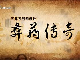 云南卫视五集系列纪录片《彝药传奇》