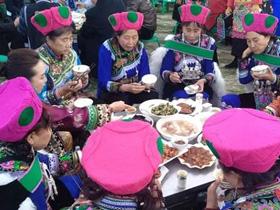 2017云南彝族年庆典在禄劝凤家古镇隆重举行