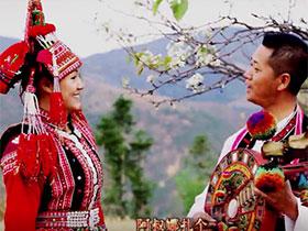 石屏彝族民歌:花腰情歌《马樱花》