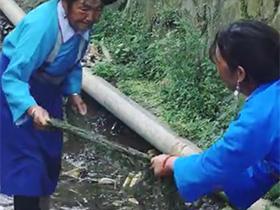 彝寨纺麻:保山市甘沟村的彝族古法纺麻织布技艺