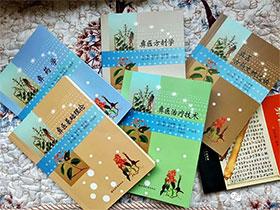 楚雄日记:步入新时代的彝族医药