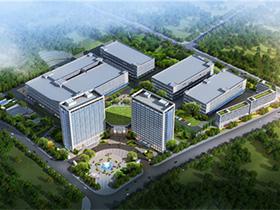 楚雄州、市领导一行莅临龙润和理想,聚焦彝药产业发展