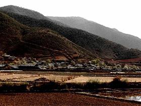 彝族地区农村留守儿童教育问题研究