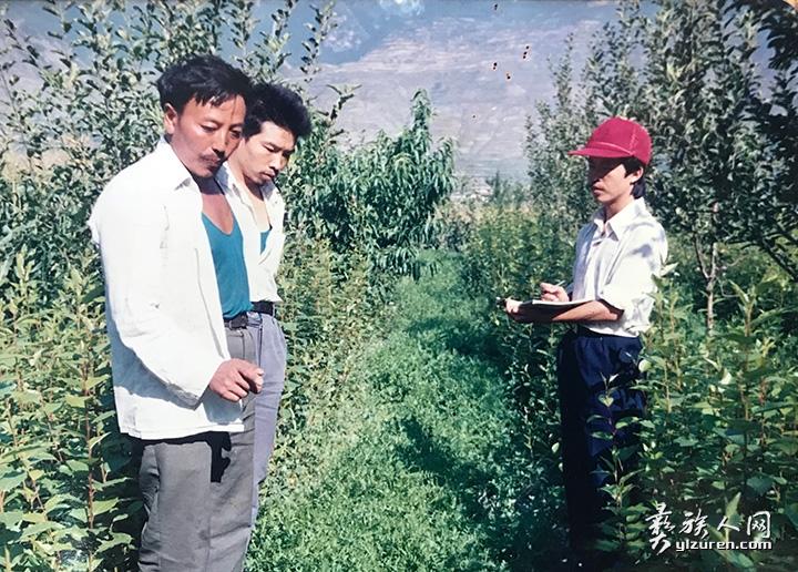 川农大读研究生期间在茂县考察耕作制度:果树下面种牧草.jpg