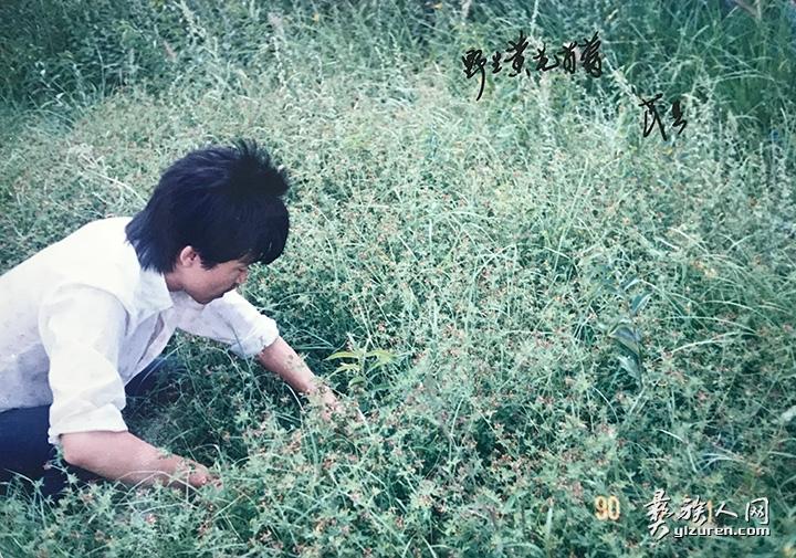 在野外考察牧草资源.jpg