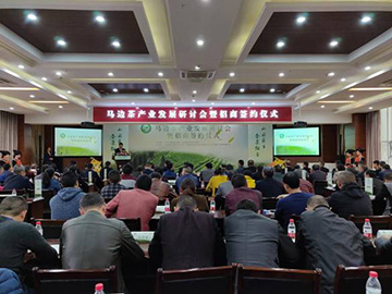 马边隆重举行茶产业发展研讨会暨招商签约仪式