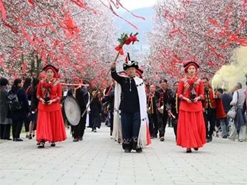 彝山祭花·百里绽放,广州媒体走进西部花海毕节