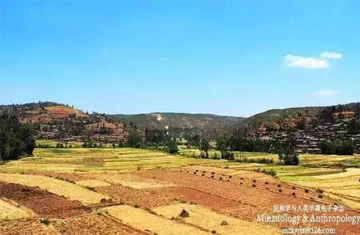 中国彝族史研究的历程及存在的问题