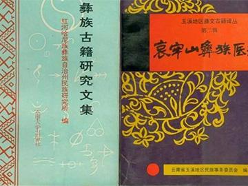 云南彝族医药文化与大理白族医药文化的历史渊源
