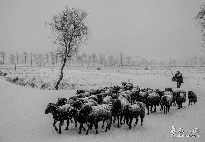 冬日牧羊人(凉山布拖特木里镇)