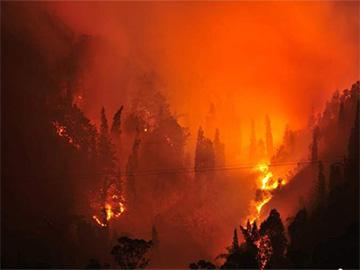 有一种痛没有眼泪 为西昌3.30火灾牺牲的消防勇士所作