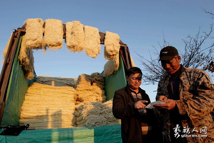 2020年 1月19。云南省红塔区小坝村。中间商到田边地头收购农户交售的萝卜丝。