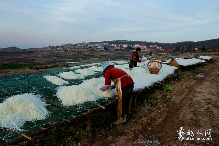 2020年 1月20日。云南省红塔区小坝村。一对夫妻正在抛撒摊开萝卜丝,便于日光的照晒。