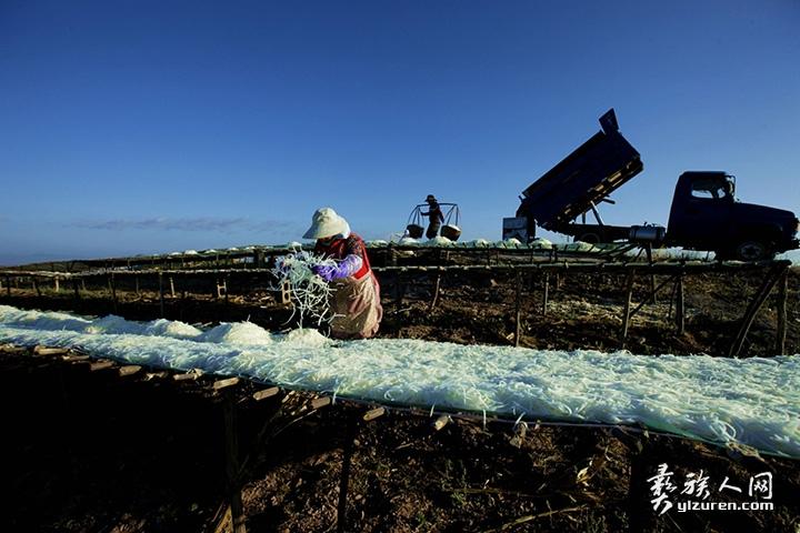 2020年 1月11日。云南省江川县放马村。一位妇女正在翻晒萝卜丝。