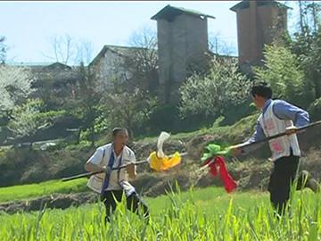 师宗历史印记:彝族把式舞