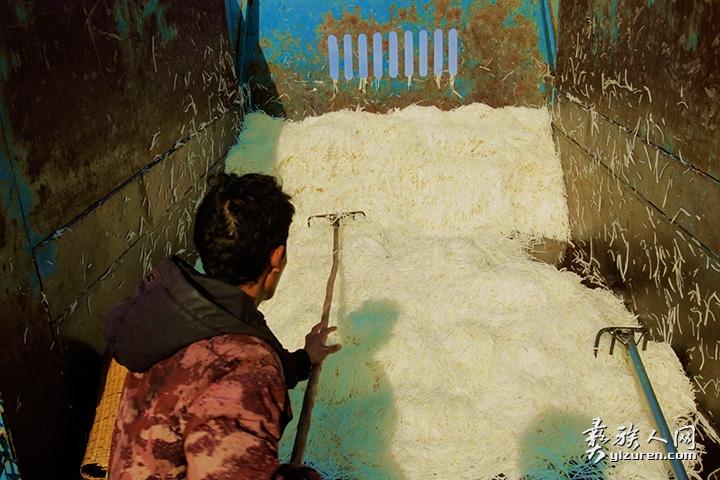 2020年 1月20日。云南省红塔区小坝村。一位男子卸下从家里拉到地里晾晒的萝卜丝。