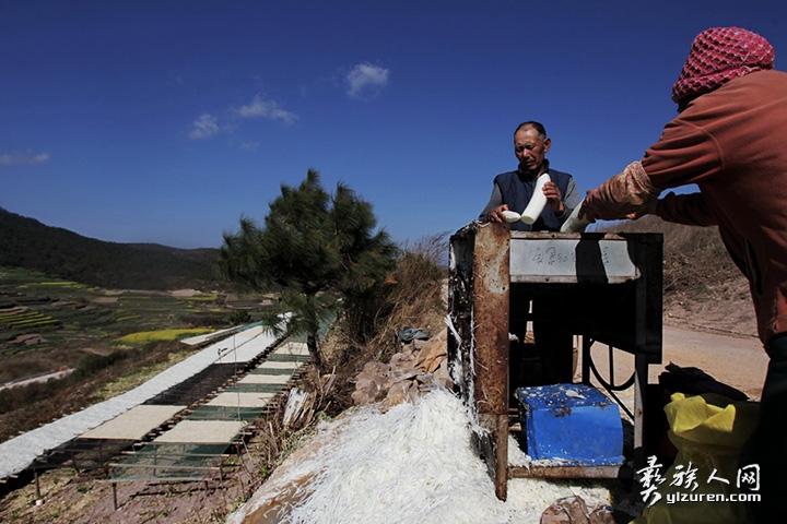 2018年 2月21日。云南省江川区放马村。一对农民老夫妻正在利用机械加工萝卜丝。