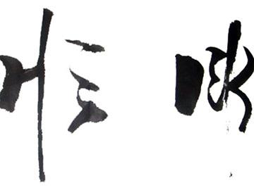 《彝文规范方案》的颁布促进了彝文书法艺术的传承与发展