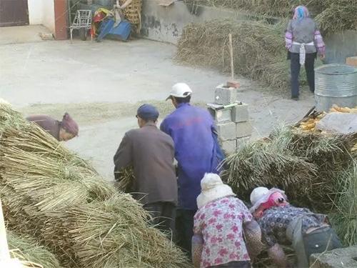 """彝族密岔支系的""""虫秧会""""——六月六"""