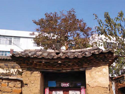 彝族传统民居建筑艺术之美
