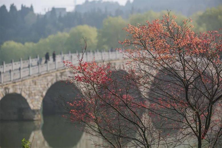 贵州宣慰府前面的石拱桥(罗大富 摄)
