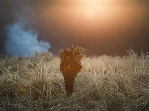 大地之子(二):摄影师聂堃镜头下的凉山彝族[多图]