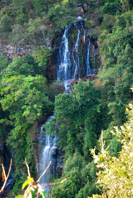 河流流域林木茂密,瀑布落差大,在近千米的河道上有高低落差瀑布十余个,最高瀑布落差40余米,形成各具特色的瀑布群。