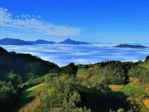 刘荣昆:彝族丧葬中的森林文化及生态观