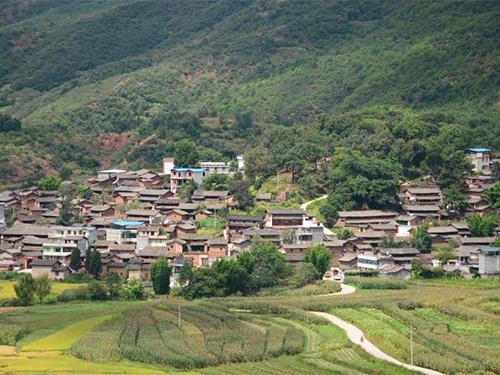 武定县七排村:彝家山寨日子甜