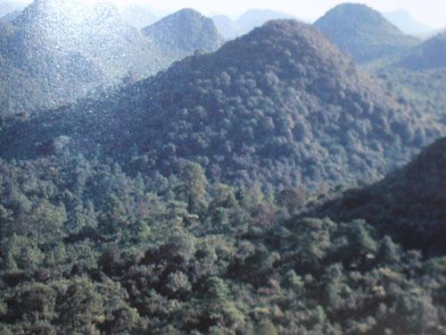 建党100周年专题:第一支云南人民武装主力部队在弥勒彝山诞生的过程