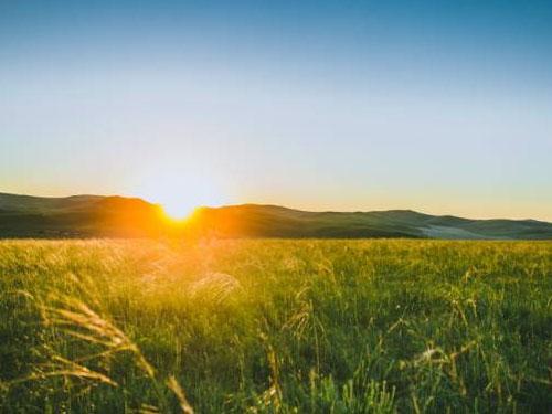 何宗林散文:心向太阳