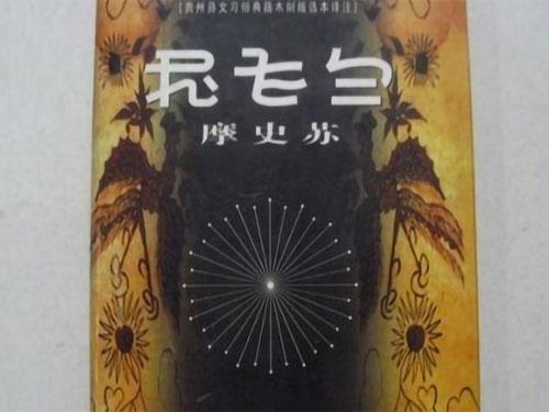 水西热卧摩史对西南彝族文化的贡献