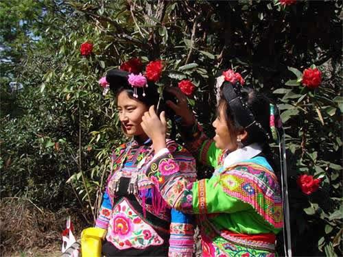 楚雄彝族二月马樱花节(梅维鲁吱嘎①)